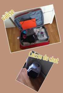 Manque plus que le chat dans la caisse et les transports demain :(