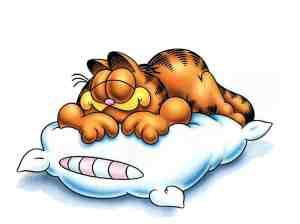 ah lalala si je pouvais dormir aussi bien que lui ...